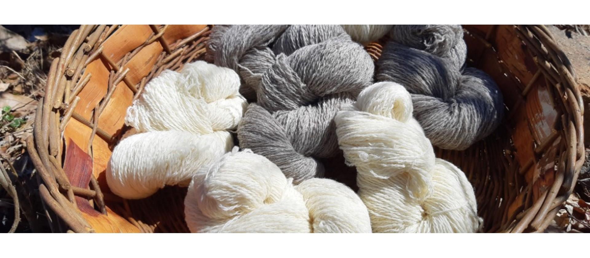Laine de mouton vierge Charlevoix Pure Laine